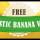 Free Banana Vector Illustration