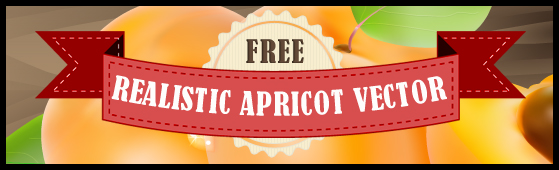 Free Realistic Apricot Vector Illustration